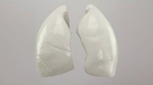 poumons-4bc